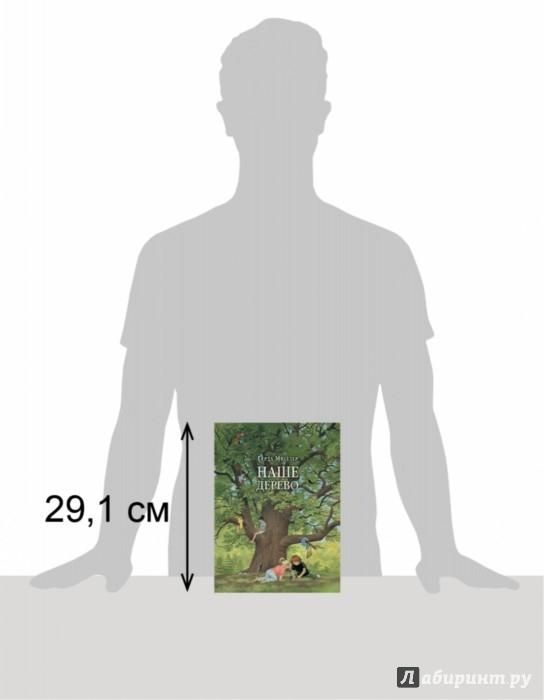 Иллюстрация 1 из 27 для Наше дерево - Герда Мюллер | Лабиринт - книги. Источник: Лабиринт