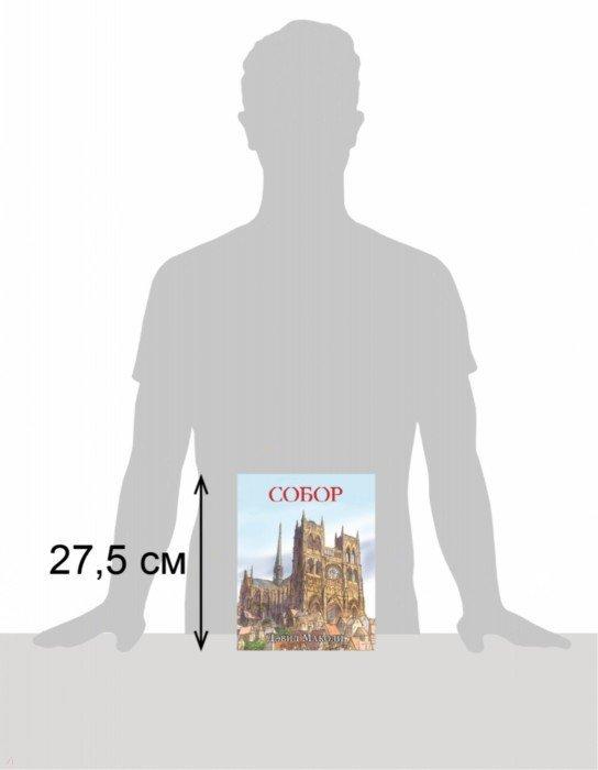 Иллюстрация 1 из 38 для Собор - Дэвид Маколи | Лабиринт - книги. Источник: Лабиринт