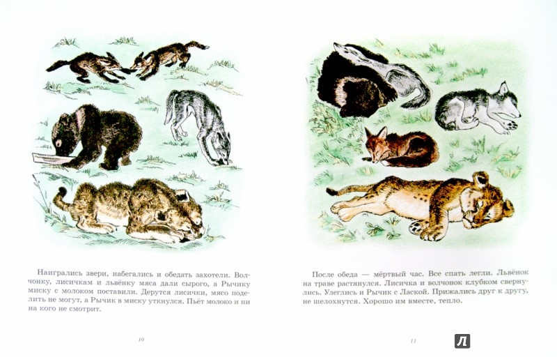 Иллюстрация 1 из 30 для Медвежонок Рычик и его товарищи - Вера Чаплина | Лабиринт - книги. Источник: Лабиринт