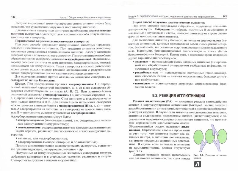 Иллюстрация 1 из 14 для Микробиология, вирусология. Руководство к практическим занятиям - Зверев, Бойченко, Несвижский | Лабиринт - книги. Источник: Лабиринт