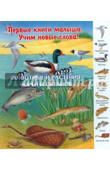 Животные и растения морей и океанов подобный дракону