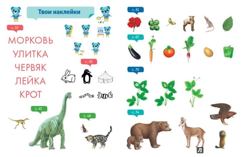 Иллюстрация 1 из 43 для Познаём мир. 4-5 лет - Руссо, Шове | Лабиринт - книги. Источник: Лабиринт