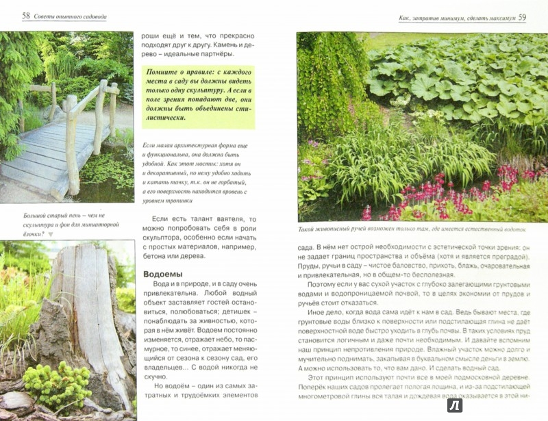Иллюстрация 1 из 7 для Советы опытного садовода - Ольга Бондарева | Лабиринт - книги. Источник: Лабиринт