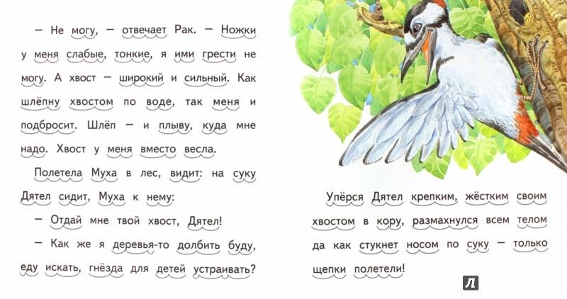 Иллюстрация 1 из 15 для Хвосты - Виталий Бианки | Лабиринт - книги. Источник: Лабиринт