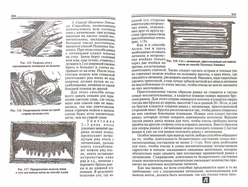 Иллюстрация 1 из 4 для Разведение и содержание пчел - Райнгольд Риб | Лабиринт - книги. Источник: Лабиринт