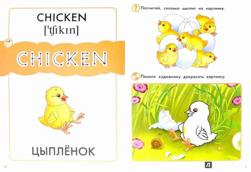 Иллюстрация 1 из 8 для Птицы. Пособие для детей 3-6 лет | Лабиринт - книги. Источник: Лабиринт