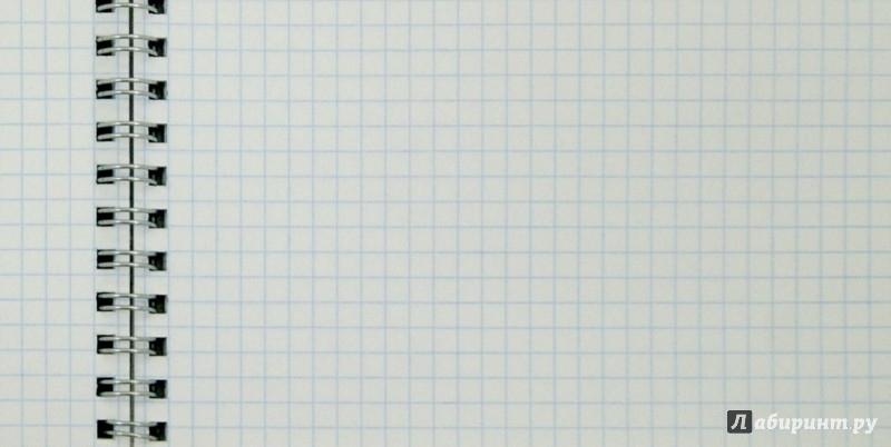 """Иллюстрация 1 из 8 для Тетрадь общая """"Совы-пэчворк"""" (80 листов) (37816-12)   Лабиринт - канцтовы. Источник: Лабиринт"""
