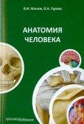 Анатомия человека. Краткий курс