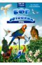 Снелленбергер Эл, Бонита Бог сотворил птиц
