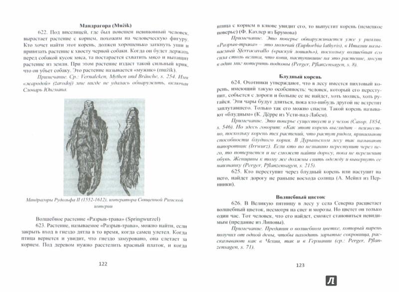 Иллюстрация 1 из 10 для Языческие обряды и поверья западных славян. Чехия и Моравия - Й. Громанн | Лабиринт - книги. Источник: Лабиринт