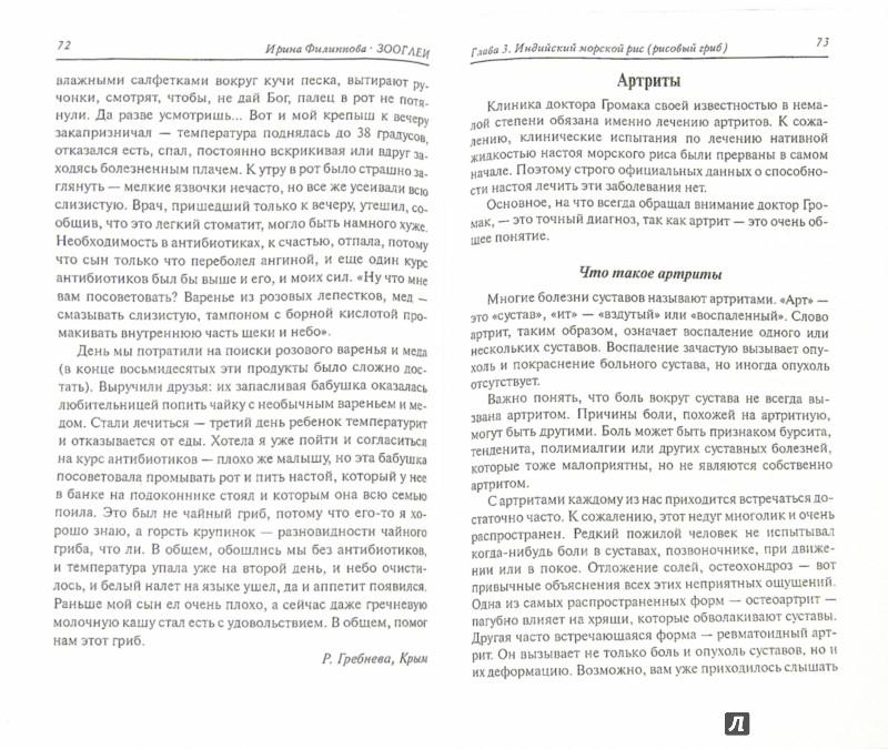 Иллюстрация 1 из 4 для Зооглеи. Лечебные свойства морского риса, чайного гриба и тибетского молочного гриба - Ирина Филиппова | Лабиринт - книги. Источник: Лабиринт