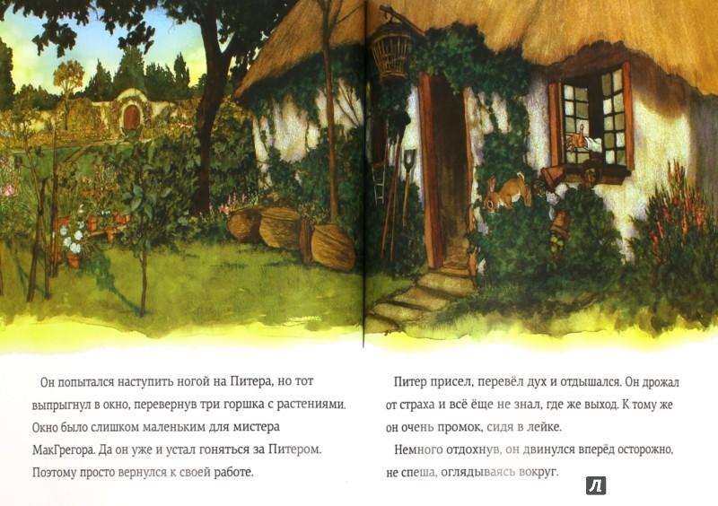 Иллюстрация 1 из 23 для Сказка про Кролика Питера - Беатрис Поттер | Лабиринт - книги. Источник: Лабиринт