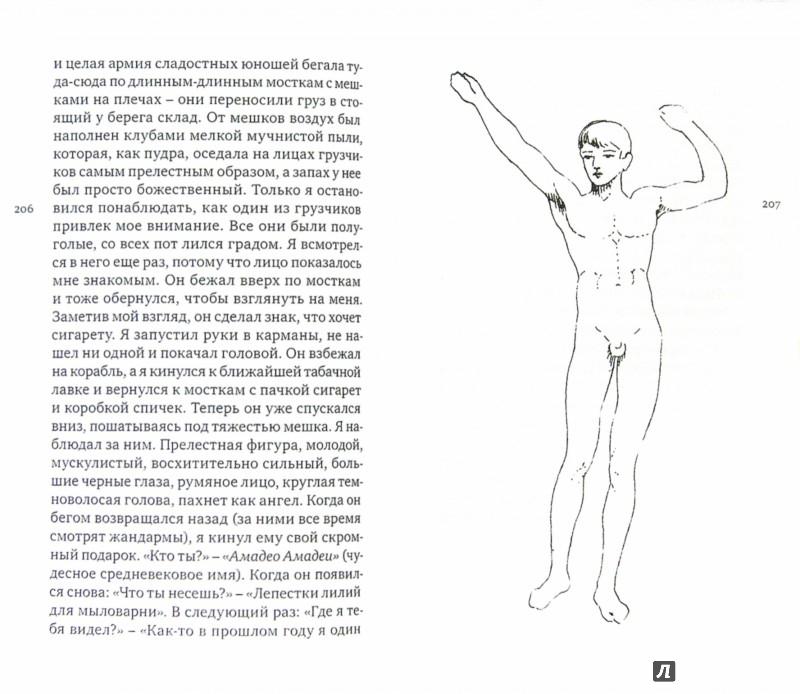 Иллюстрация 1 из 11 для То, что рассказал мне Тото - Барон Корво | Лабиринт - книги. Источник: Лабиринт