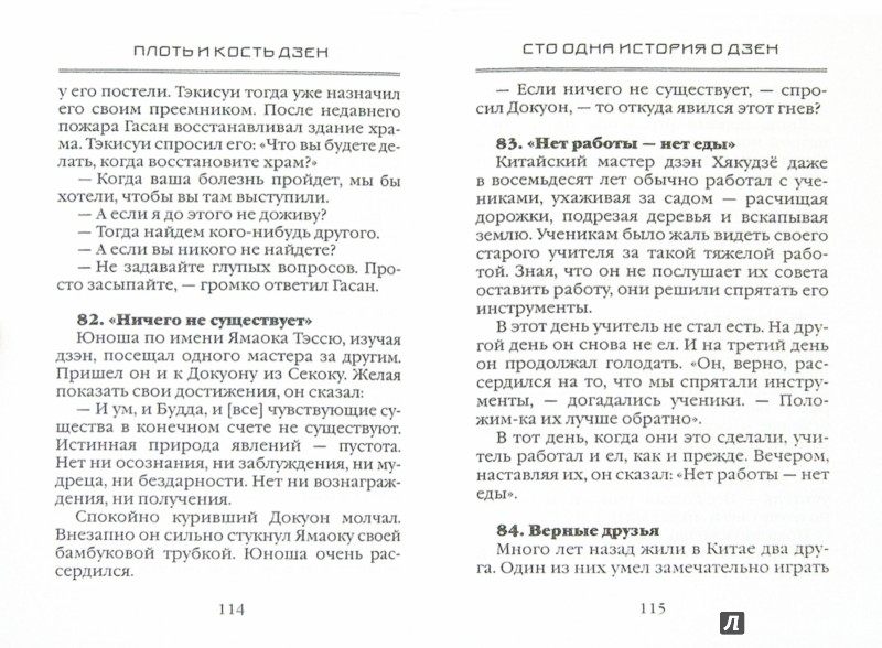 Иллюстрация 1 из 8 для Плоть и кость дзен | Лабиринт - книги. Источник: Лабиринт