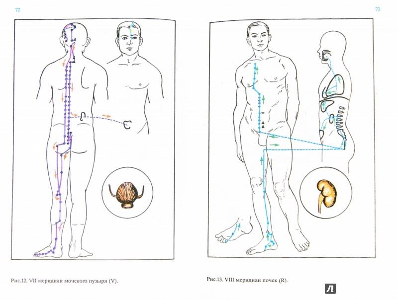 Иллюстрация 1 из 5 для Экстрасенсорное целительство - Трепаков, Полыковский   Лабиринт - книги. Источник: Лабиринт