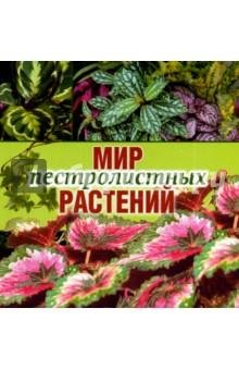 Мир пестролистных растений интернет магазин комнатных цветов луковицы калл недорого
