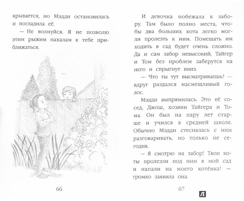 Иллюстрация 1 из 17 для Котёнок Пуговка, или Храбрость в награду - Холли Вебб | Лабиринт - книги. Источник: Лабиринт