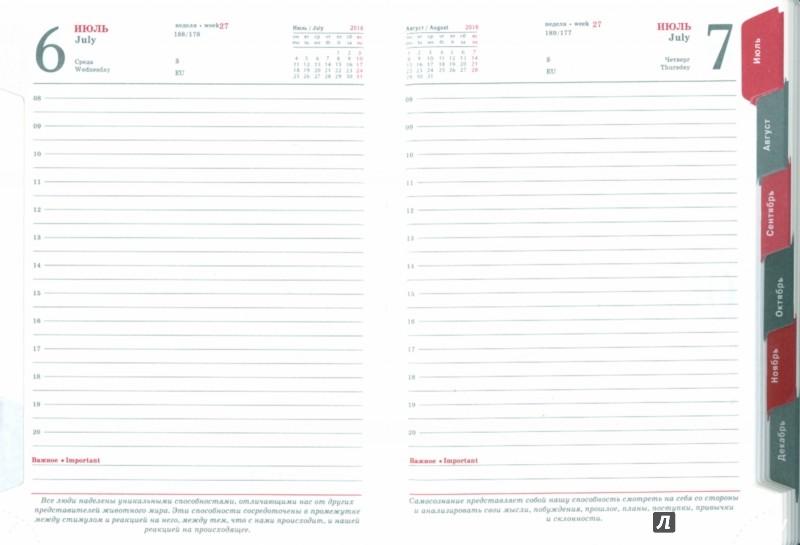 Иллюстрация 1 из 15 для Ежедневник датированный на 2016 год (ТЕМНО-КОРИЧНЕВЫЙ/БИРЮЗОВЫЙ) (37962-15) | Лабиринт - канцтовы. Источник: Лабиринт