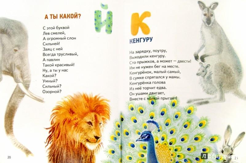 Иллюстрация 1 из 21 для Азбука в зоопарке - Алексей Шевченко | Лабиринт - книги. Источник: Лабиринт