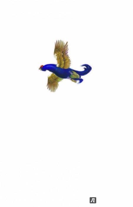 Иллюстрация 1 из 21 для Рассказы о природе - Бианки, Сладков, Пришвин | Лабиринт - книги. Источник: Лабиринт