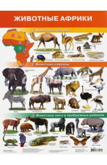 """Плакат """"Животные Африки"""" (2705)"""