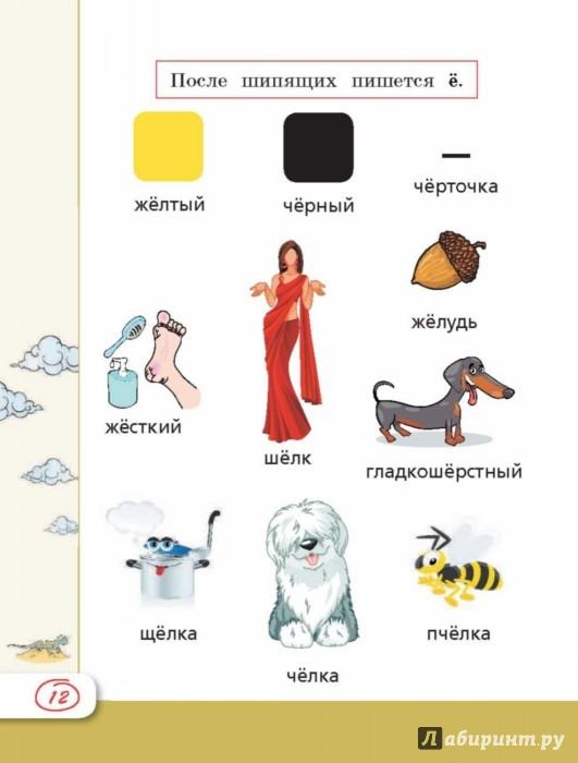 Все правила русского языка 12 класс в картинках