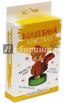 Котенок (cd-113) куплю кошку экзота в г иркутске