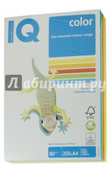 Бумага для печати IQ COLOR MIX INTENSIVE, 5 цветов, 250 листов (RB02)
