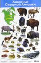 Животные Северной Америки. Демонстрационный плакат (2881) цена