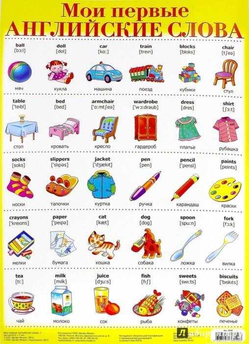 английские слова с переводом с картинками