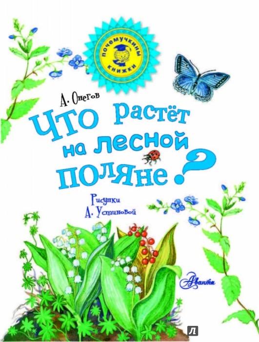 Книга quotЧто растёт на лесной полянеquot  Онегов Анатолий