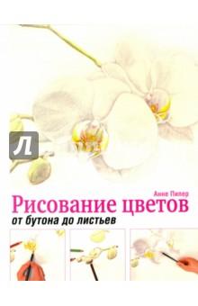 Рисование цветов от бутона до листьев книга для записей с практическими упражнениями для здорового позвоночника