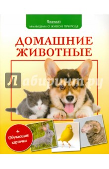 Домашние животные фитон