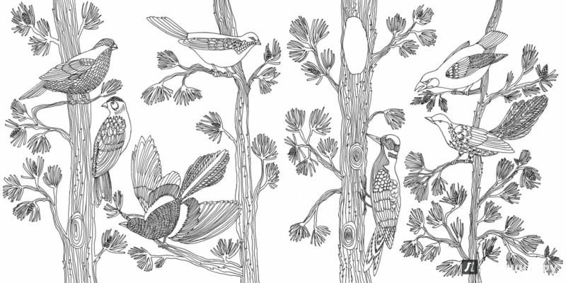 Иллюстрация 4 из 50 для Птицы счастья. Раскрась свой мир и добавь жизни цвета   Лабиринт - книги. Источник: Лабиринт