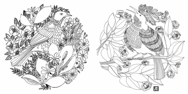 Иллюстрация 10 из 50 для Птицы счастья. Раскрась свой мир и добавь жизни цвета | Лабиринт - книги. Источник: Лабиринт