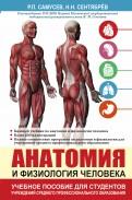 Анатомия и физиология человека. Учебное пособие