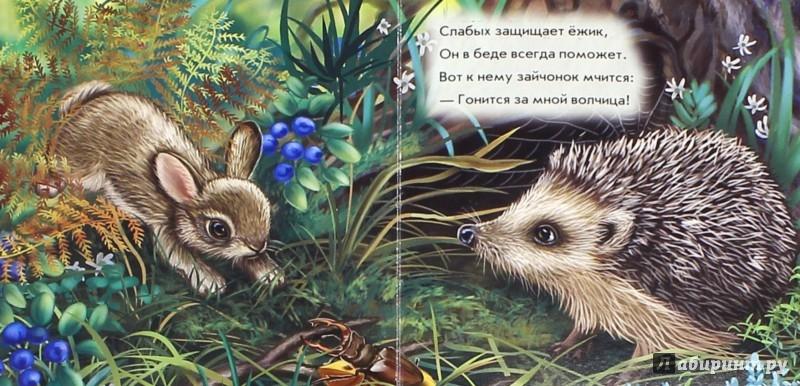 Иллюстрация 1 из 25 для Ёжик - С. Зайцева | Лабиринт - книги. Источник: Лабиринт