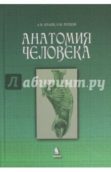 Анатомия человека шилкин в филимонов в анатомия по пирогову атлас анатомии человека том 1 верхняя конечность нижняя конечность cd