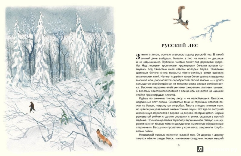 Иллюстрация 2 из 56 для Русский лес - Иван Соколов-Микитов   Лабиринт - книги. Источник: Лабиринт