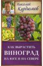 Курдюмов Николай Иванович Как вырастить виноград на Юге и Севере