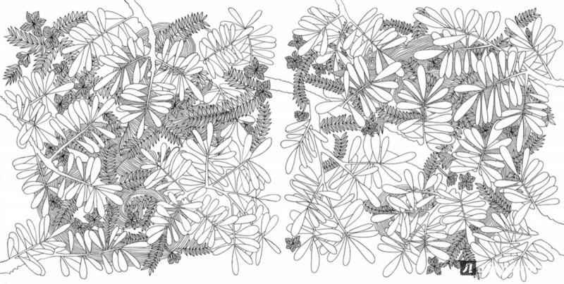 Иллюстрация 3 из 27 для Раскраска. Прятки-загадки ...