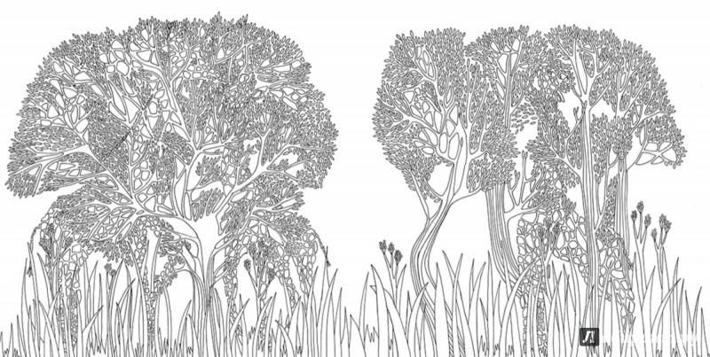 Иллюстрация 6 из 27 для Раскраска. Прятки-загадки ...