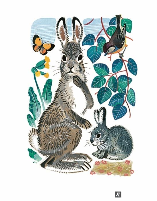 Иллюстрация 1 из 52 для Как назвать зайчонка? - Анатолий Лельевр | Лабиринт - книги. Источник: Лабиринт