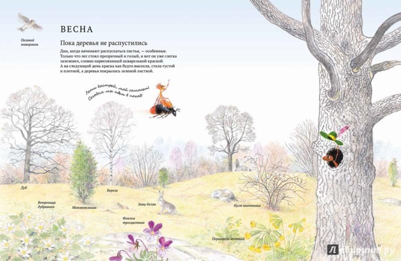 Иллюстрация 1 из 50 для Экспедиция Софи - Стефан Каста | Лабиринт - книги. Источник: Лабиринт