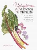 Портреты овощей и фруктов. Практическое руководство по рисованию акварелью