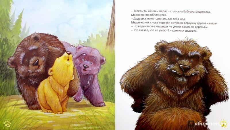 Иллюстрация 1 из 29 для Старые медведи не умеют лазать по деревьям - Хейди Ховарт | Лабиринт - книги. Источник: Лабиринт
