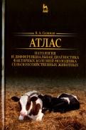 Атлас. Патология и дифференциация болезней молодых сельскохозяйственных животных