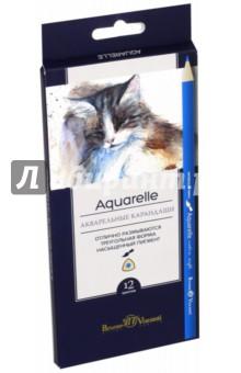 Карандаши акварельные Aquarelle (12 цветов) (30-0034) блокноты bruno visconti блокнот а5 megapolis flex
