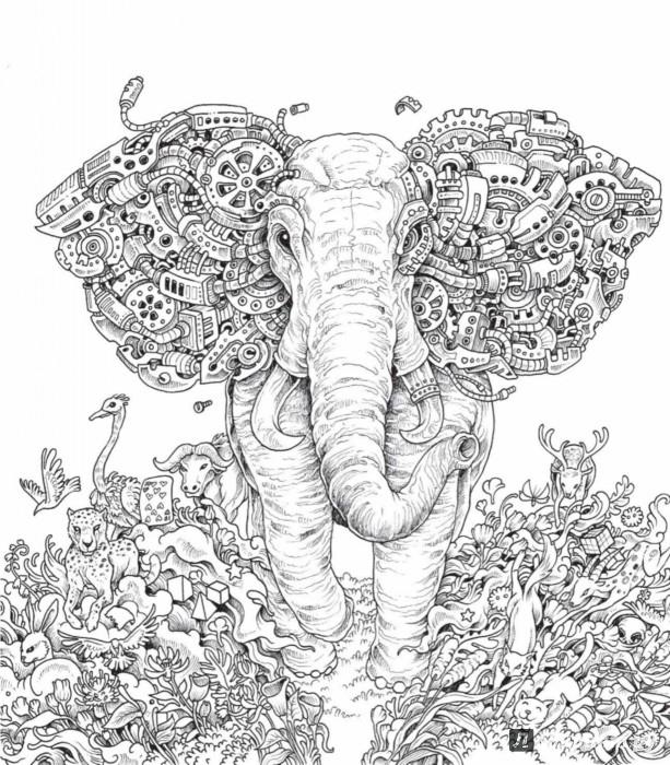 Иллюстрация 8 из 36 для Метаморфозы. Экстремальные ...