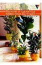Варфоломеева Елизавета Болезни и вредители комнатных растений для растений ранних стадий сукцессии характерны следующие признаки
